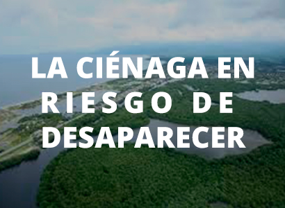 Photo of LA CIÉNAGA EN RIESGO DE DESAPARECER