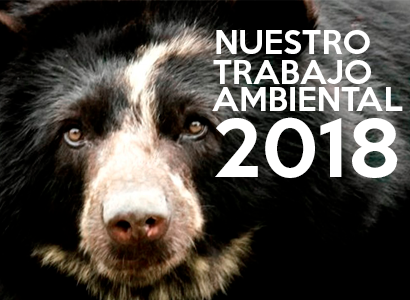 Photo of Nuestro trabajo ambiental para 2018