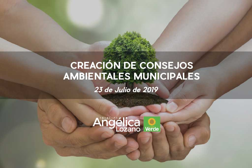 Photo of PL Consejos Ambientales Municipales