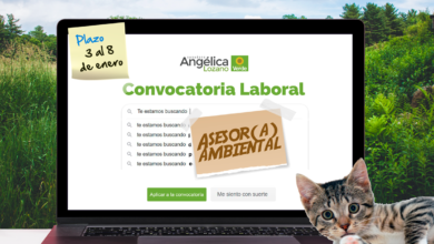 Photo of Convocatoria Laboral: Asesor ambiental UTL