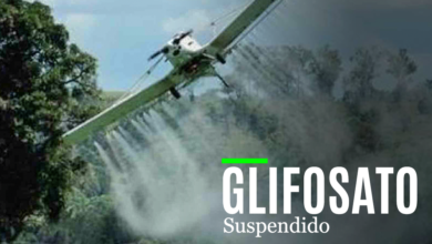 Photo of Suspendida audiencia pública para aspersión de glifosato.